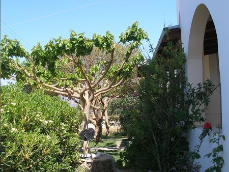 Aeolos Studios Frangokastellon, Frangokastello, Chania, 73011, Greece best offer